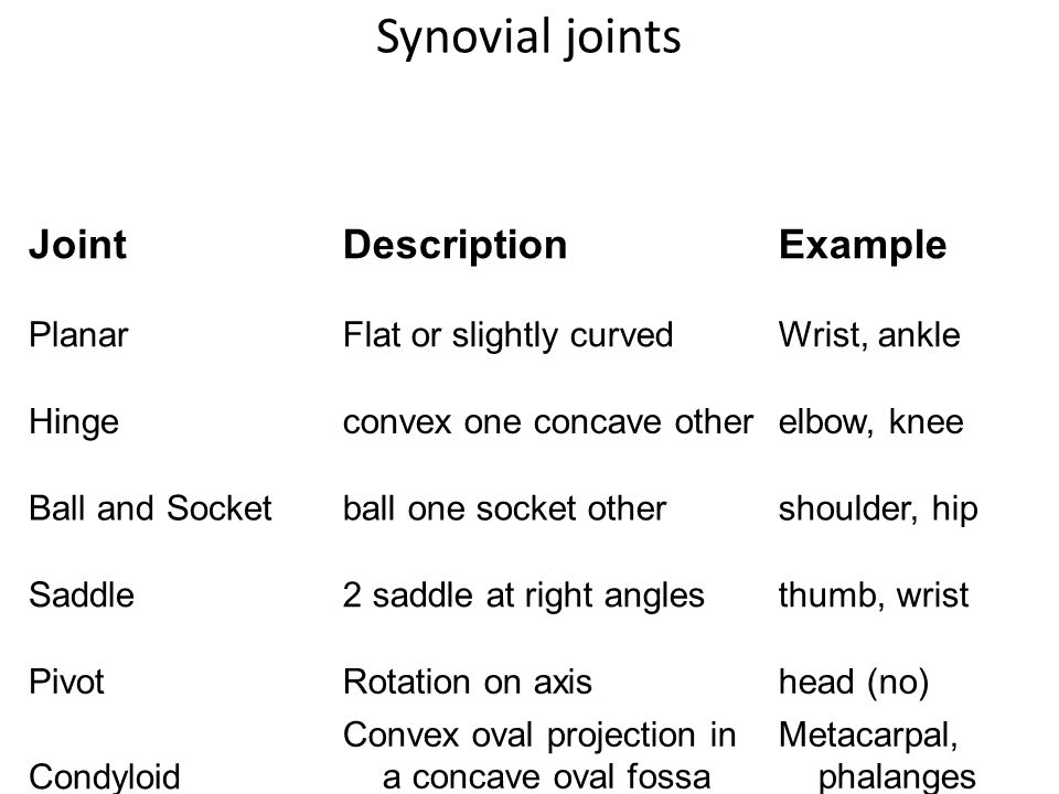 Synovial joints Joint Description Example Planar