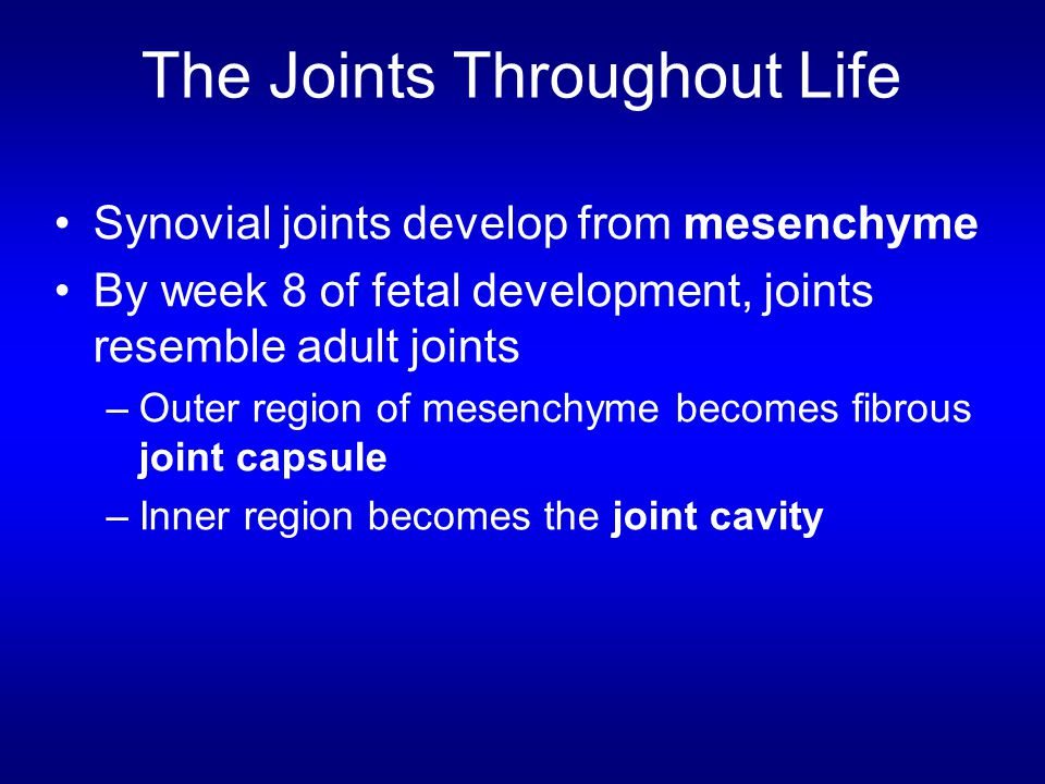 The Joints Throughout Life