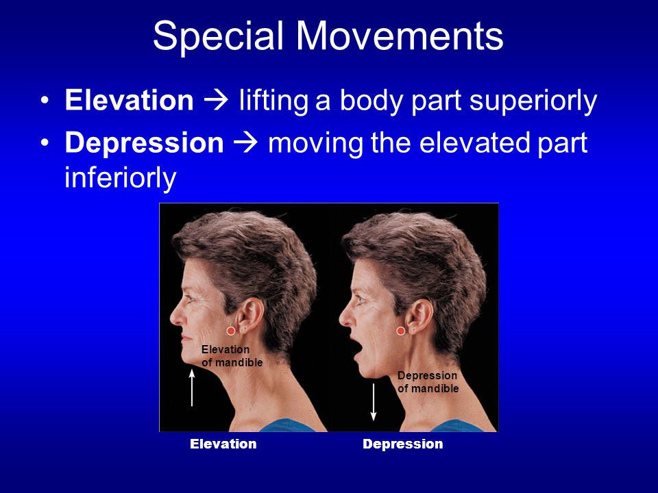 Special Movements Elevation  lifting a body part superiorly