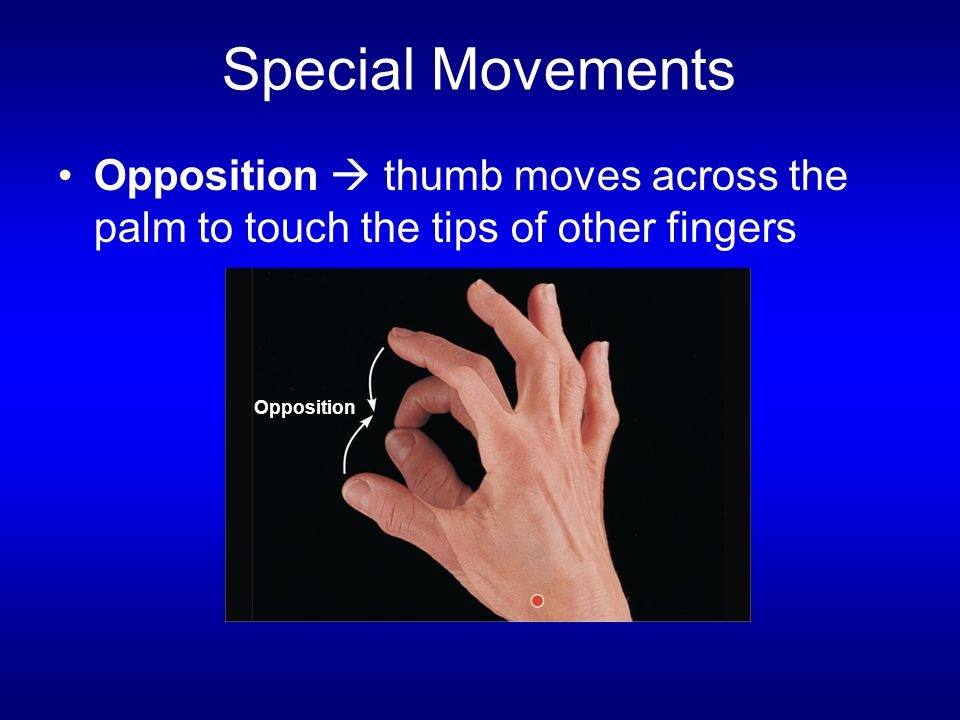 Special Movements Opposition  thumb moves across the palm to touch the tips of other fingers.