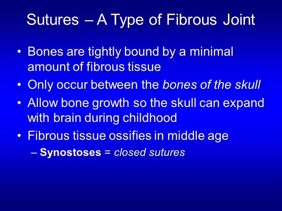 Sutures – A Type of Fibrous Joint