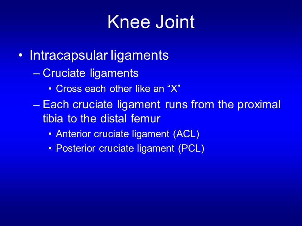 Knee Joint Intracapsular ligaments Cruciate ligaments