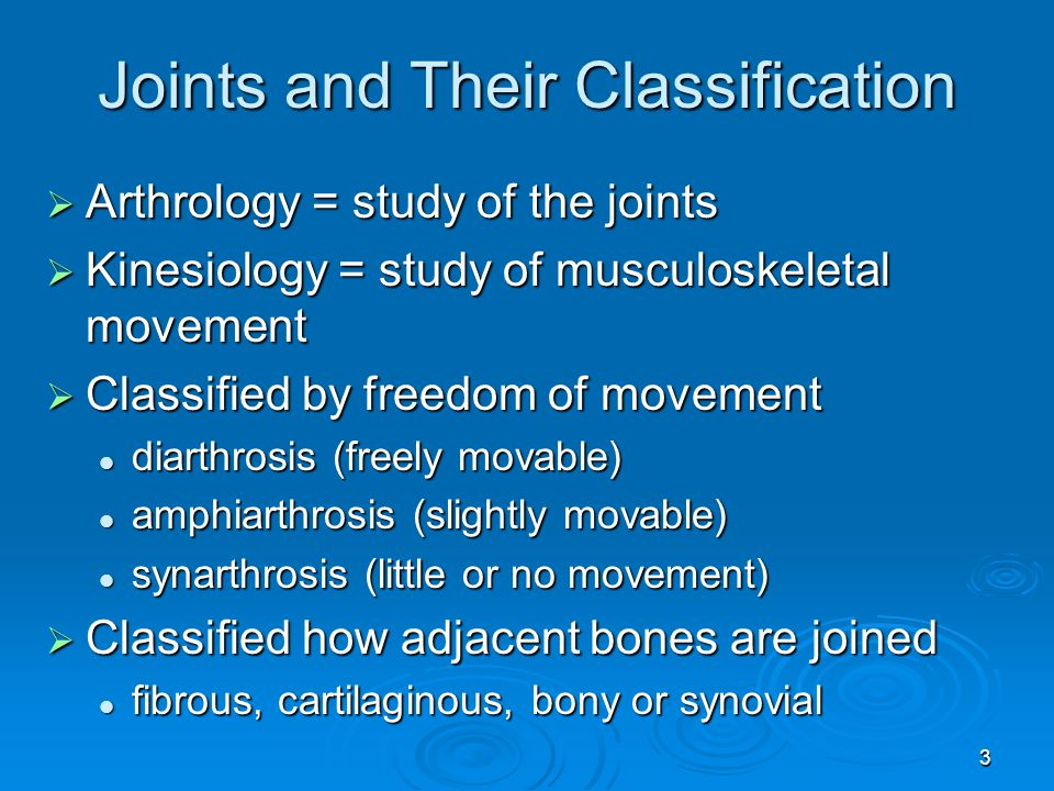 Joints and Their Classification