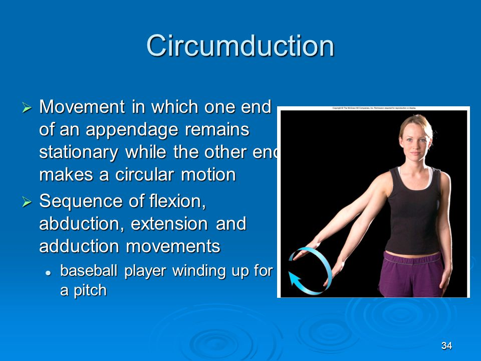 Circumduction Movement in which one end of an appendage remains stationary while the other end makes a circular motion.