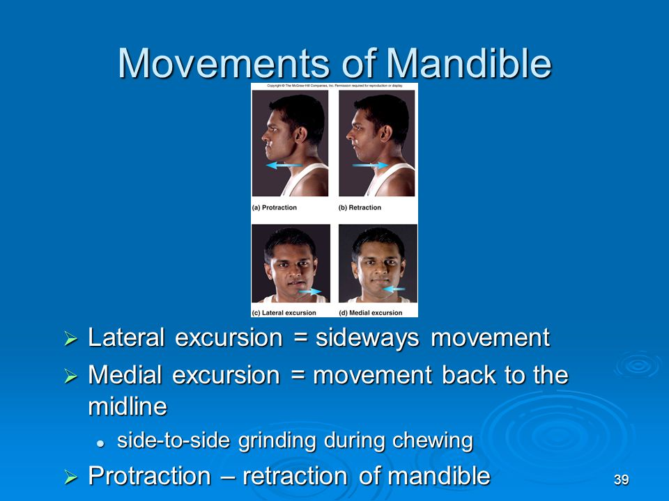 Movements of Mandible Lateral excursion = sideways movement