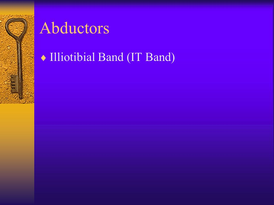 Abductors Illiotibial Band (IT Band)