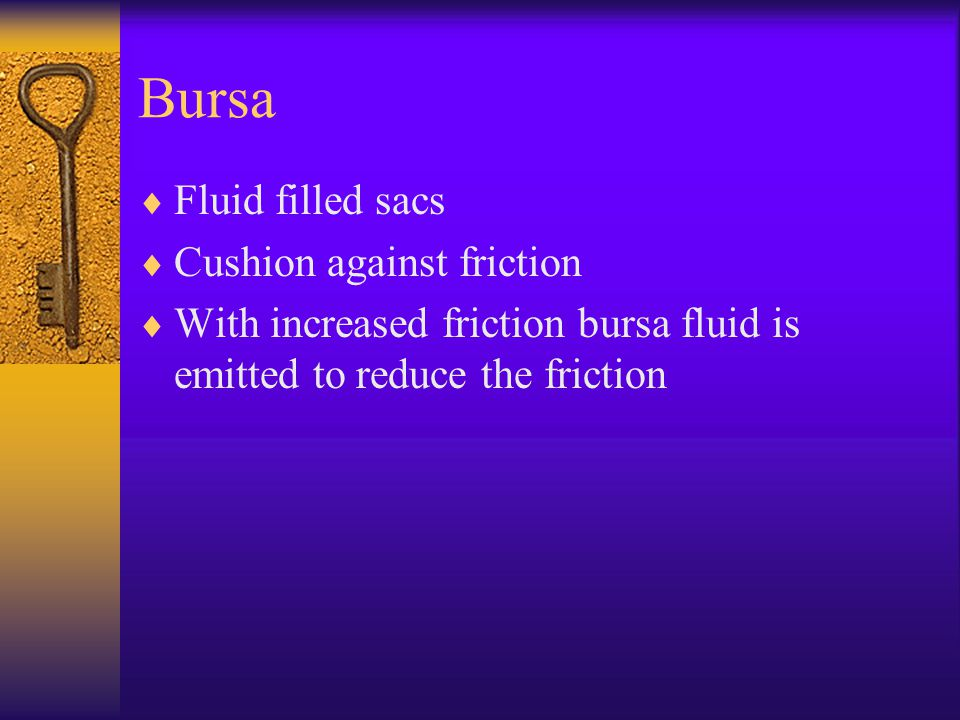 Bursa Fluid filled sacs Cushion against friction