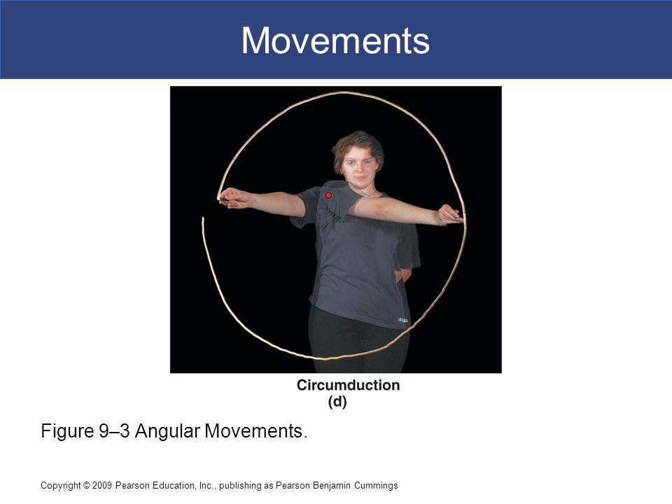 Movements Figure 9–3 Angular Movements.