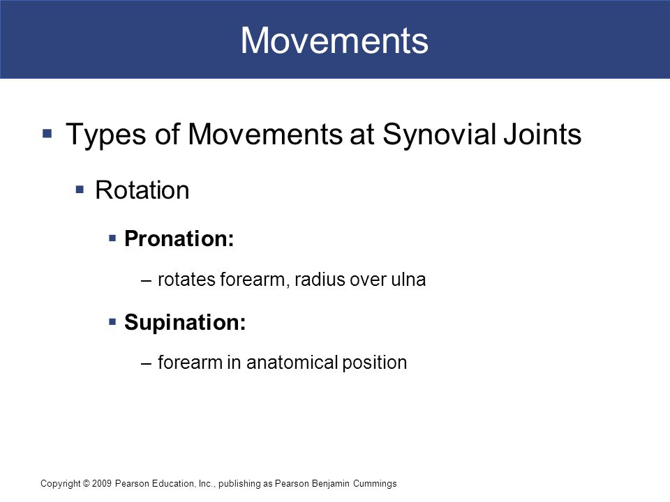 Movements Types of Movements at Synovial Joints Rotation Pronation:
