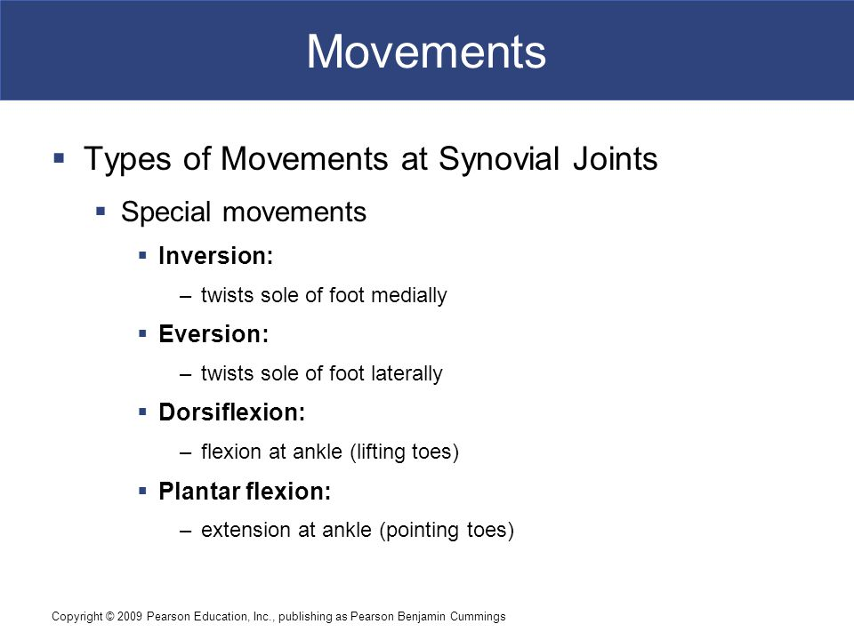 Movements Types of Movements at Synovial Joints Special movements