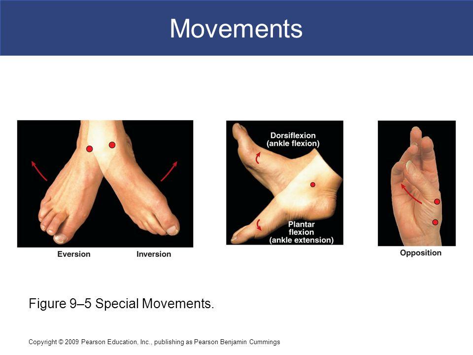 Movements Figure 9–5 Special Movements.