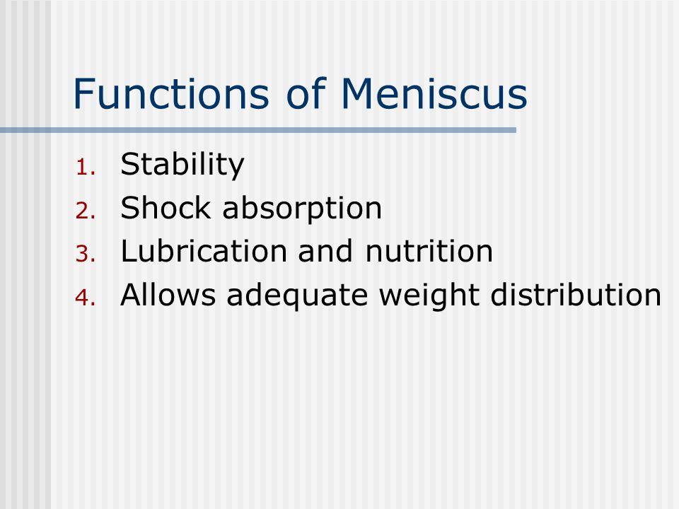 Functions of Meniscus Stability Shock absorption