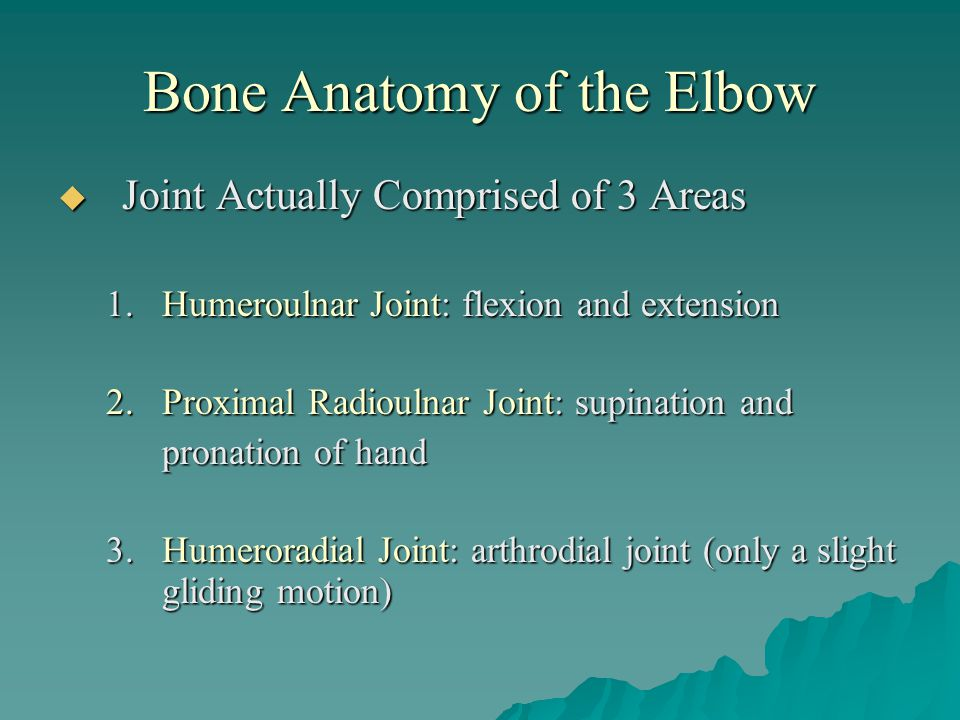 Bone Anatomy of the Elbow