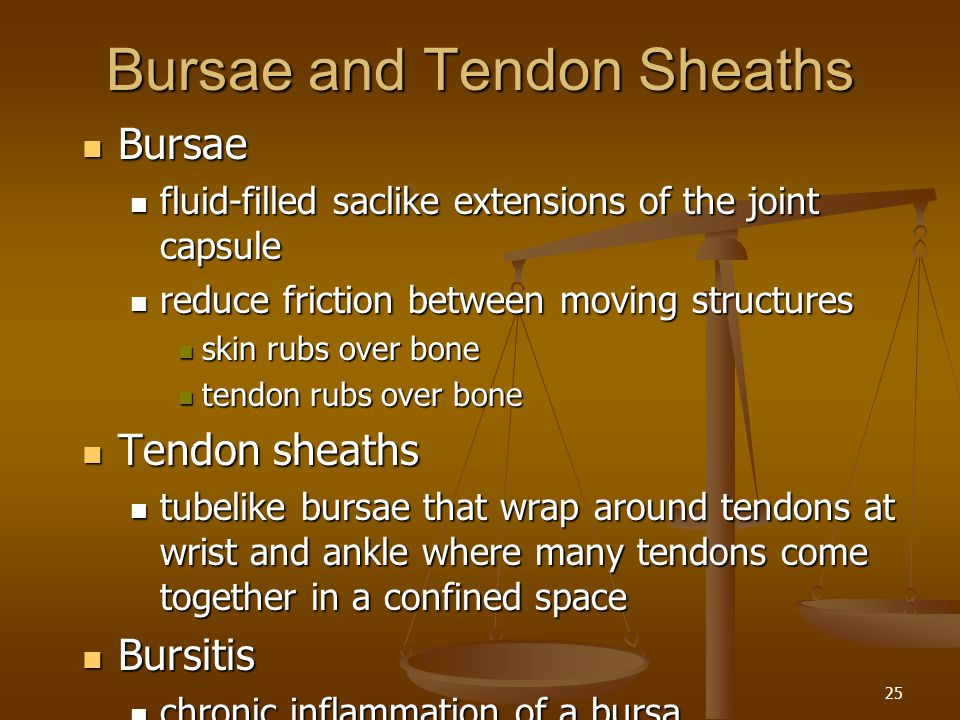 Bursae and Tendon Sheaths