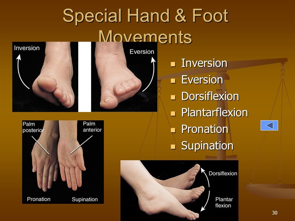 Special Hand & Foot Movements