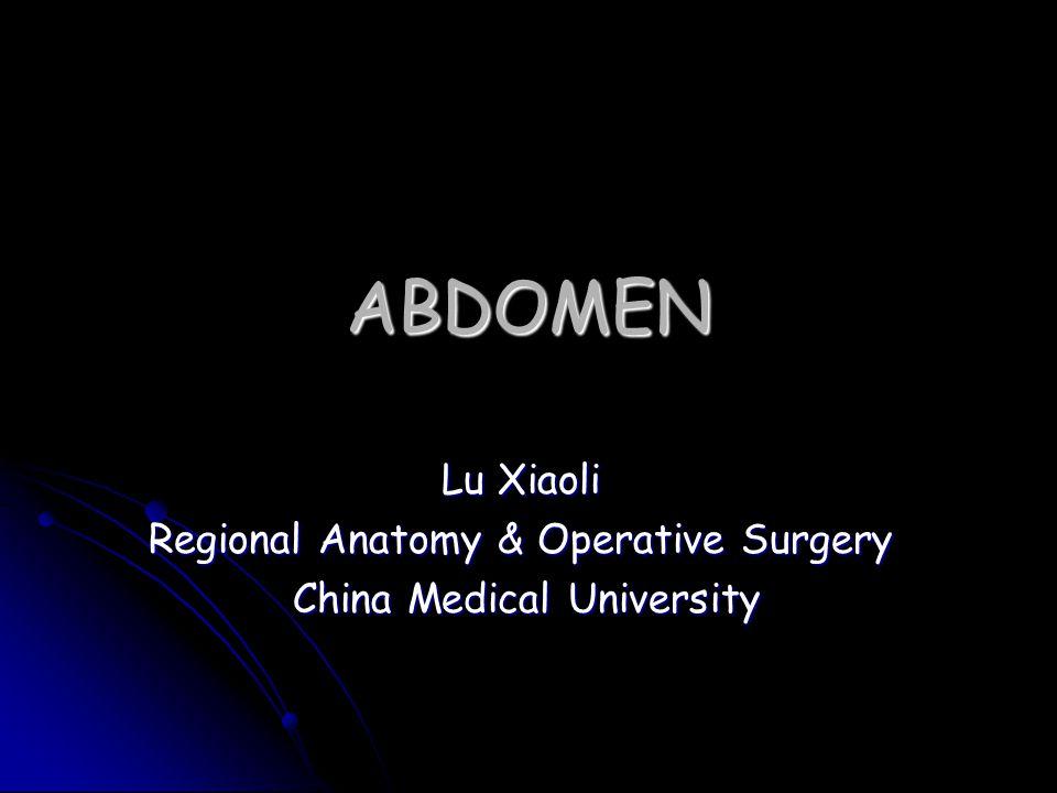ABDOMEN Lu Xiaoli Regional Anatomy & Operative Surgery