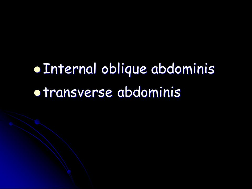 Internal oblique abdominis