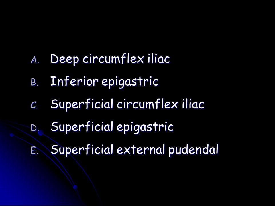 Deep circumflex iliac Inferior epigastric. Superficial circumflex iliac.