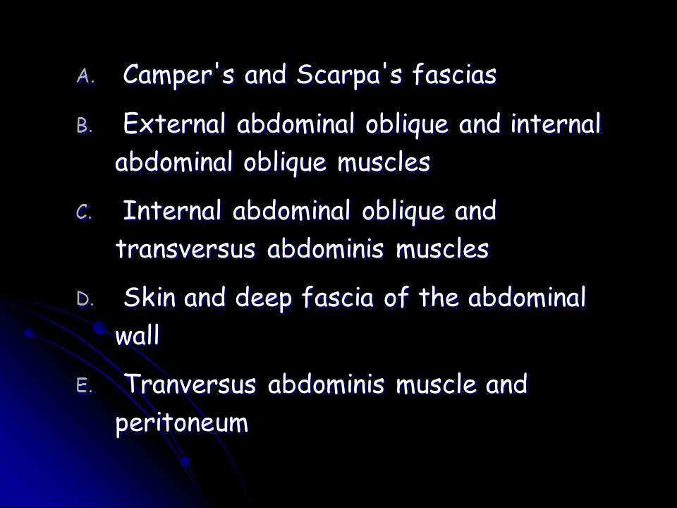 Camper s and Scarpa s fascias