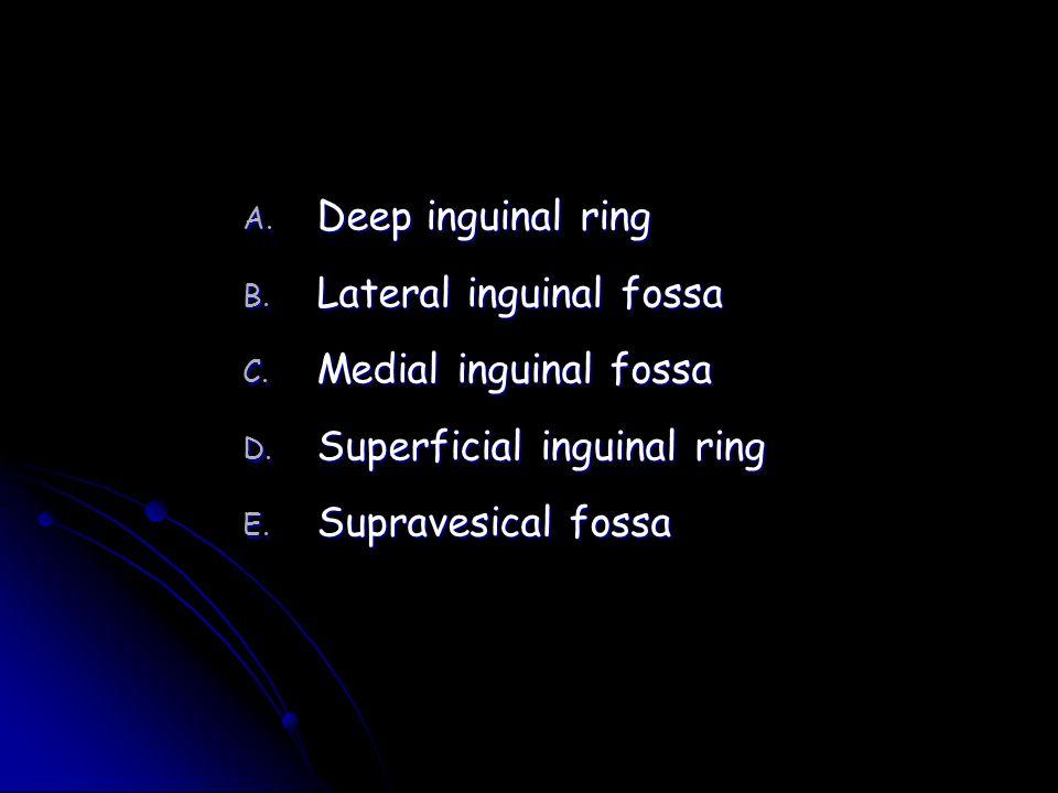 Deep inguinal ring Lateral inguinal fossa. Medial inguinal fossa.