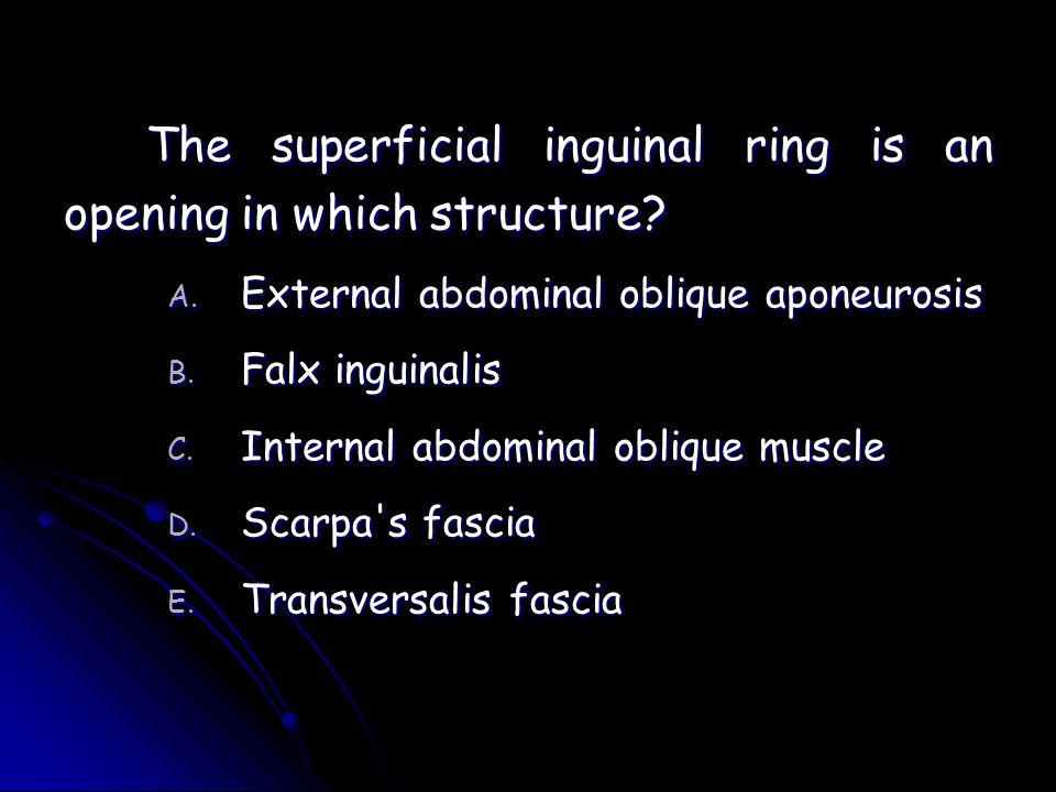 The superficial inguinal ring is an opening in which structure