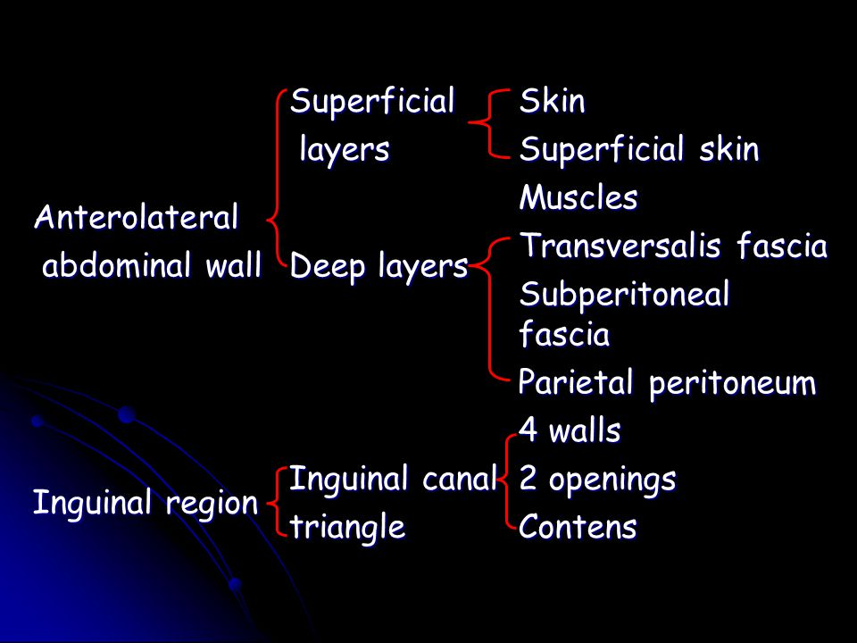 Anterolateral abdominal wall. Superficial. layers. Skin. Superficial skin. Deep layers. Muscles.