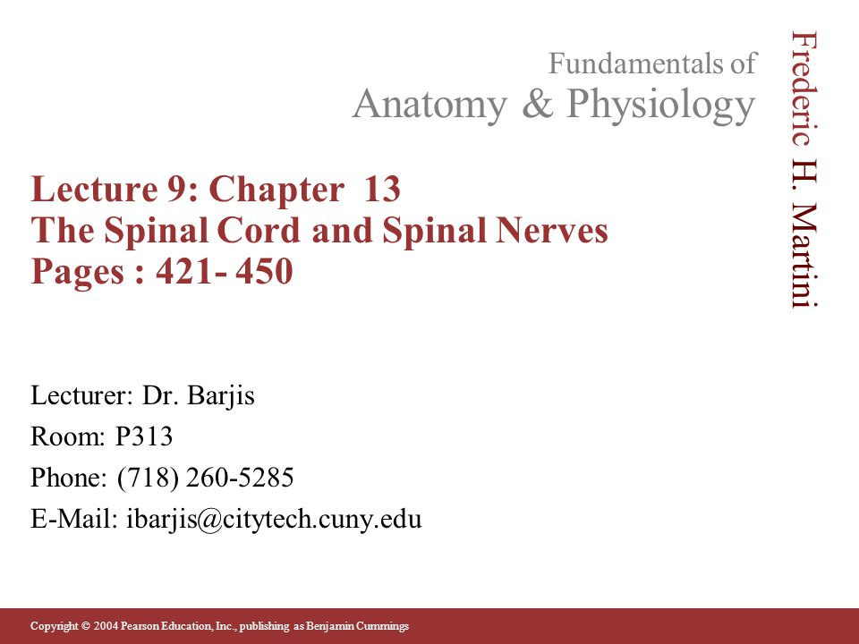 Lecture 9: Chapter 13 The Spinal Cord and Spinal Nerves Pages : 421- 450