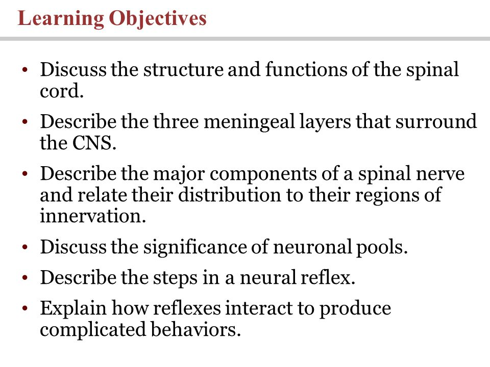 Learning Objectives Discuss the structure and functions of the spinal cord. Describe the three meningeal layers that surround the CNS.