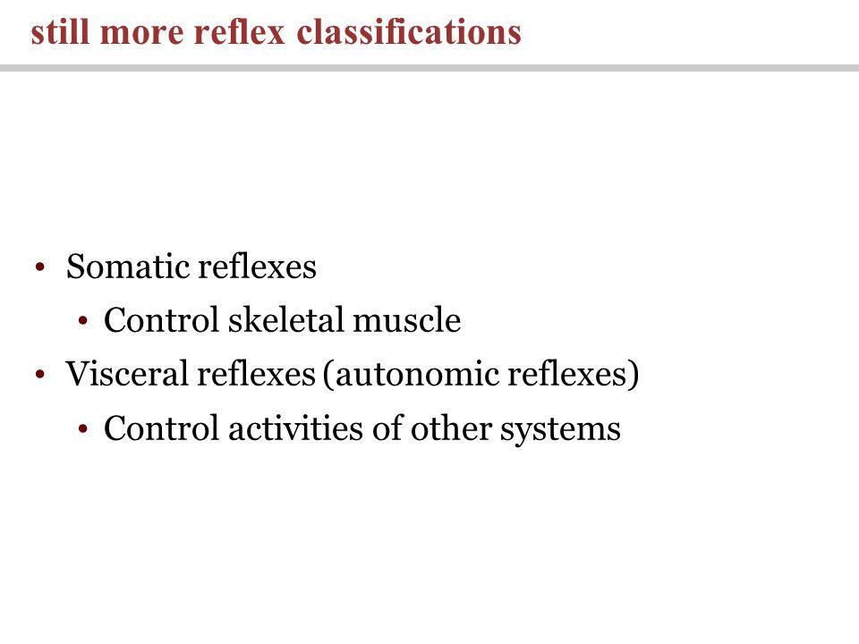 still more reflex classifications