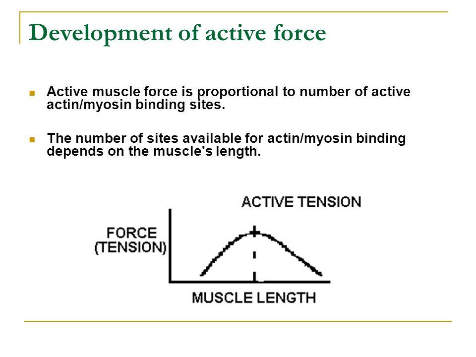 Development of active force
