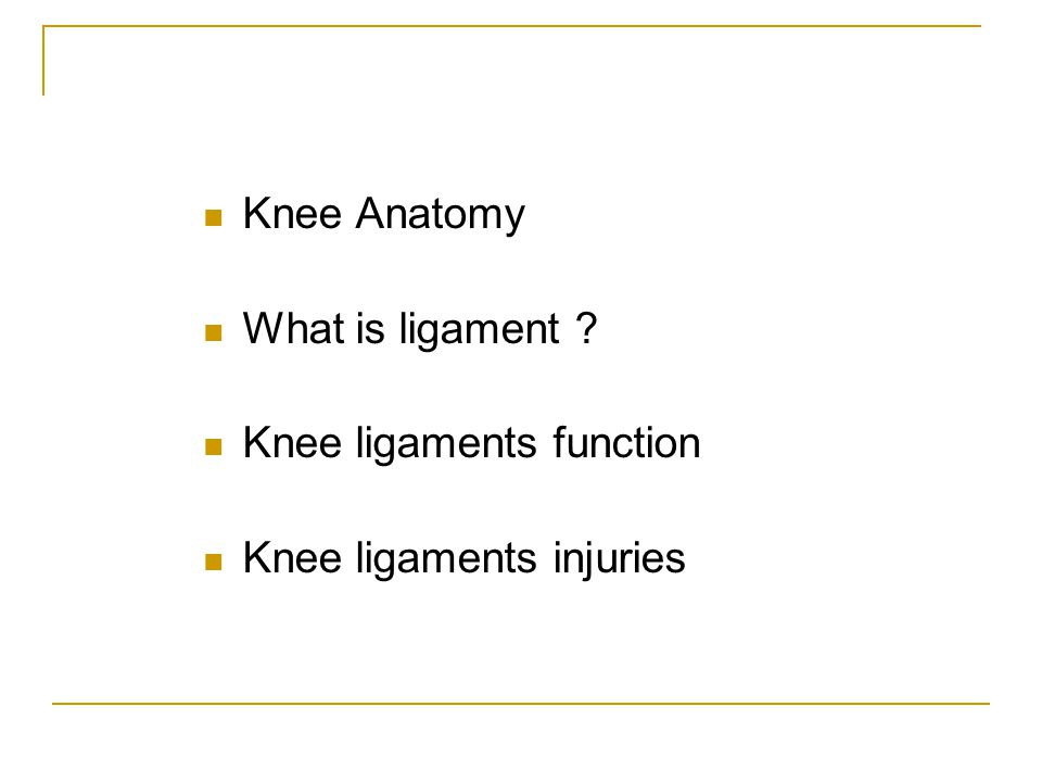 Knee Anatomy What is ligament Knee ligaments function Knee ligaments injuries