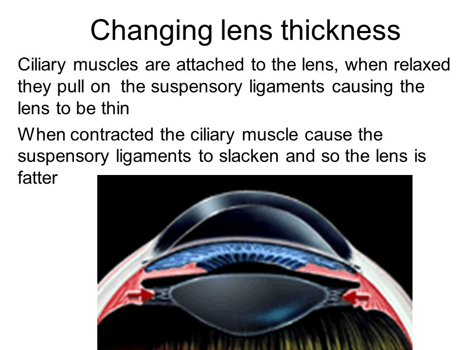 Changing lens thickness