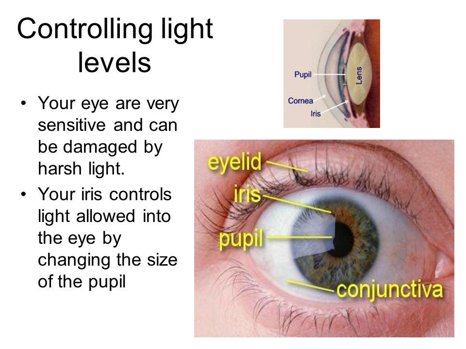 Controlling light levels