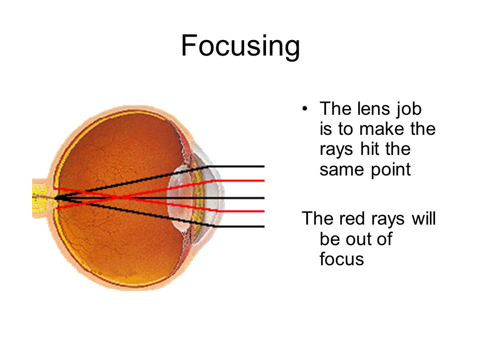 Focusing The lens job is to make the rays hit the same point