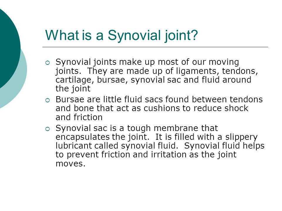 What is a Synovial joint