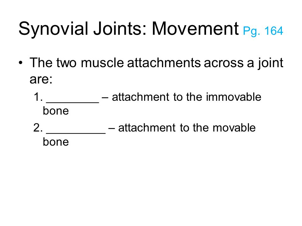 Synovial Joints: Movement Pg. 164