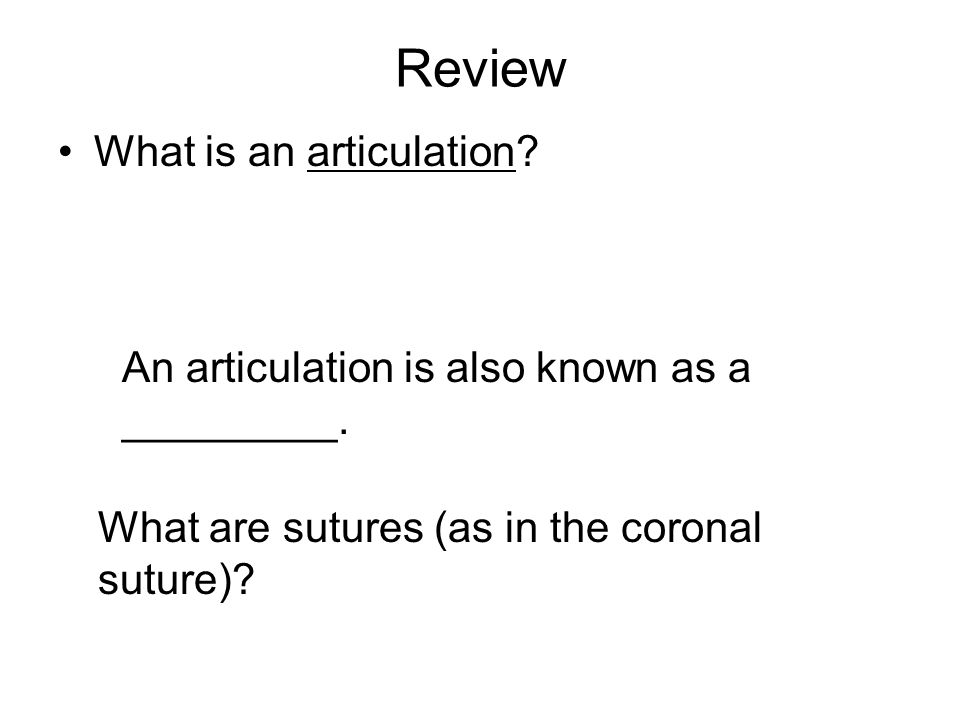 Review What is an articulation