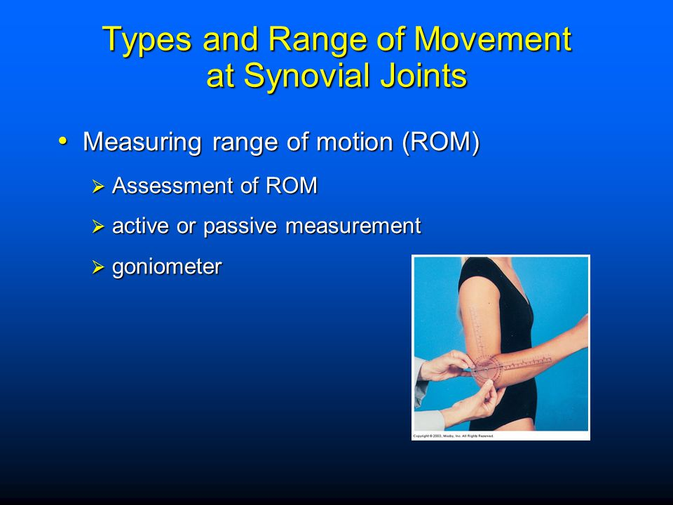 Types and Range of Movement at Synovial Joints
