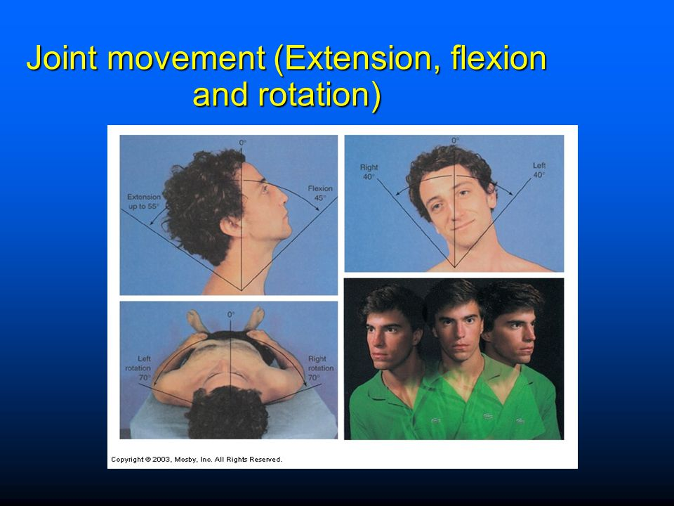 Joint movement (Extension, flexion and rotation)