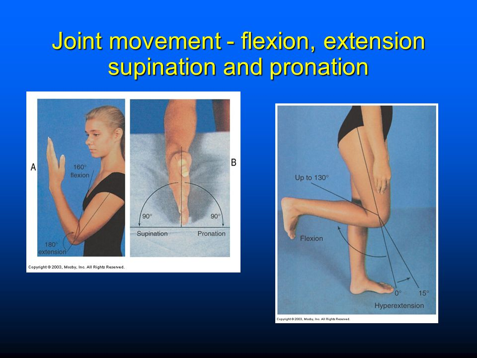Joint movement - flexion, extension supination and pronation