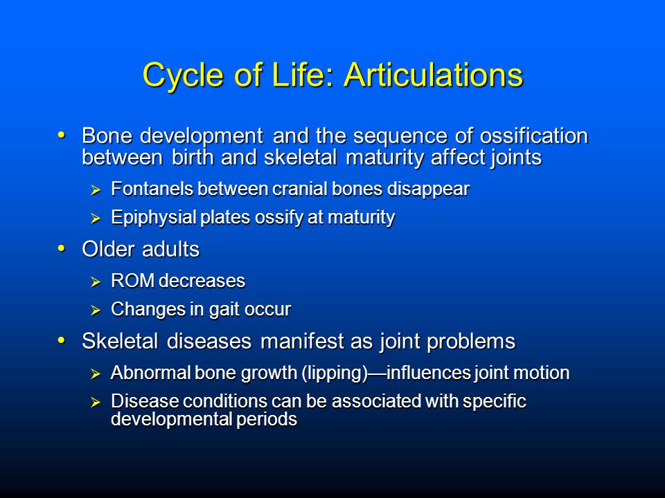Cycle of Life: Articulations