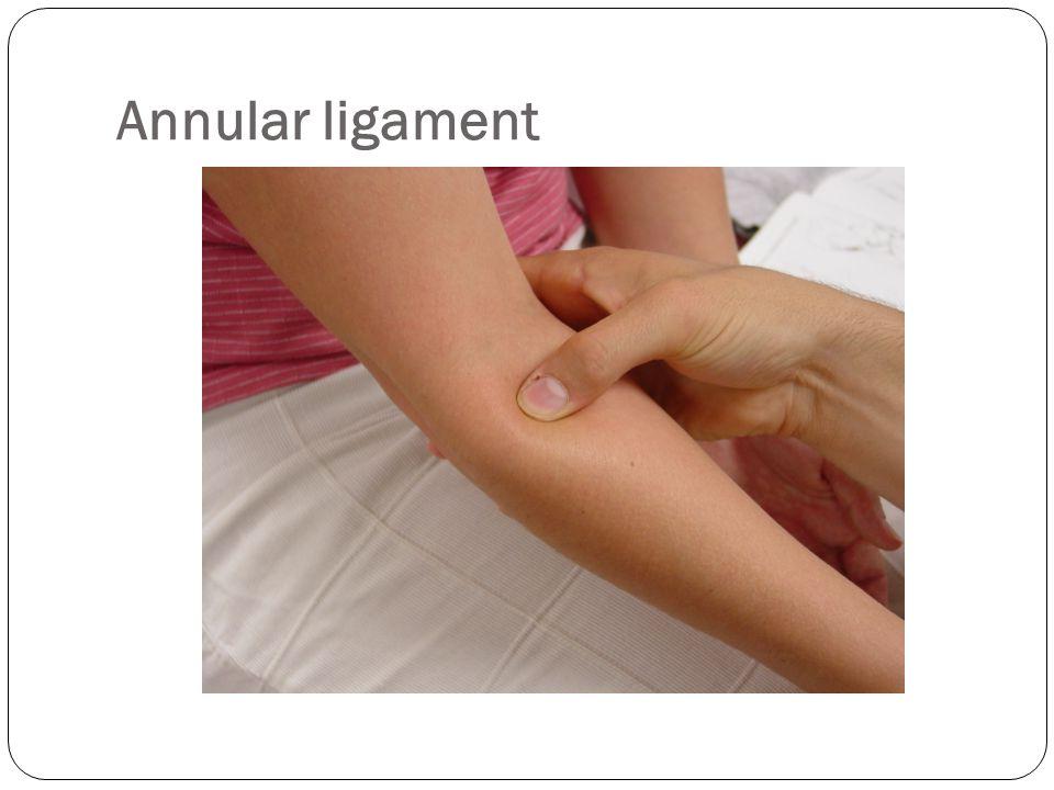 Annular ligament