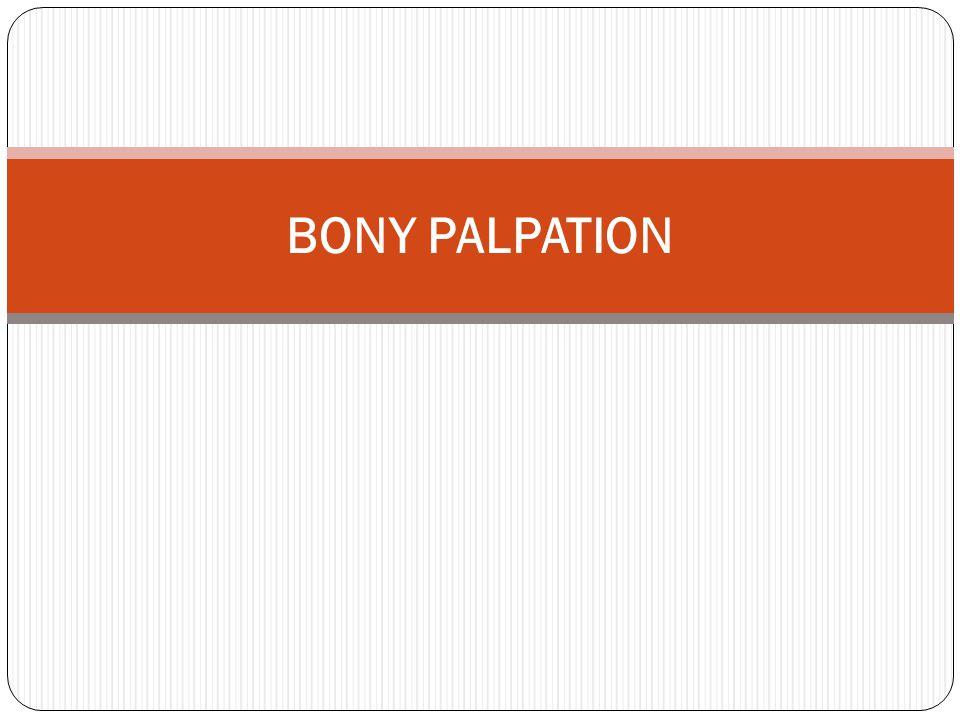 BONY PALPATION