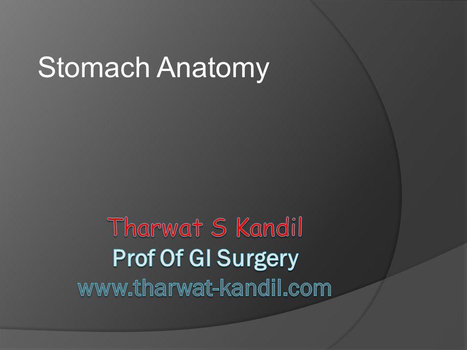 Tharwat S Kandil Prof Of GI Surgery www.tharwat-kandil.com