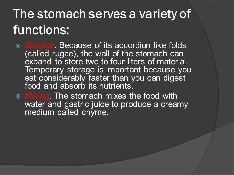 The stomach serves a variety of functions: