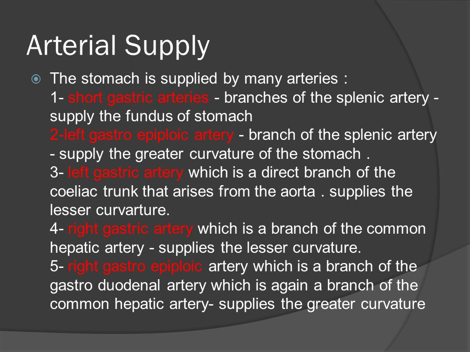 Arterial Supply