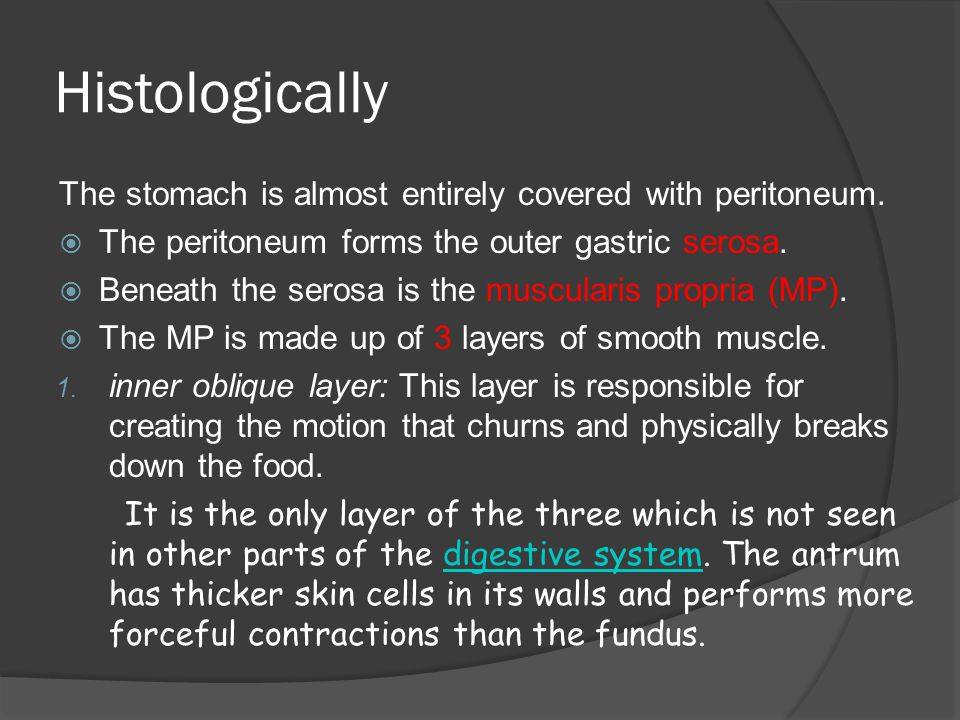 Histologically The stomach is almost entirely covered with peritoneum.