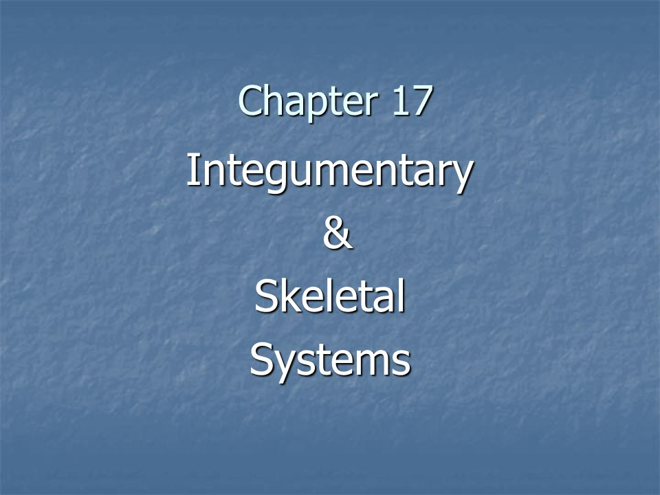 Integumentary & Skeletal Systems