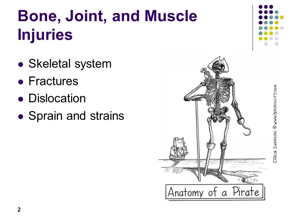 Bone, Joint, and Muscle Injuries