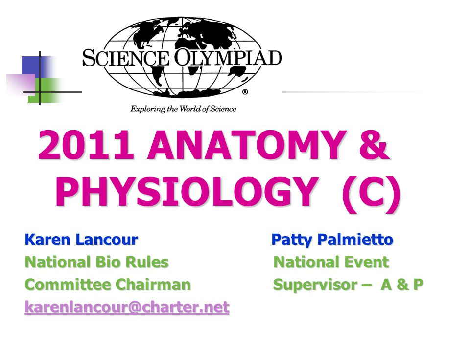 2011 ANATOMY & PHYSIOLOGY (C) - ppt video online download